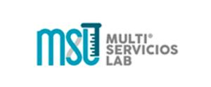 MULTI-SERVICIOS-LAB-min-300x124